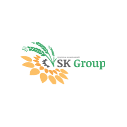 SK Group